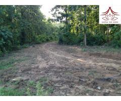 Large Piece of Mekong Land(位于湄公河边大面积可耕农业地欲以低价出售)
